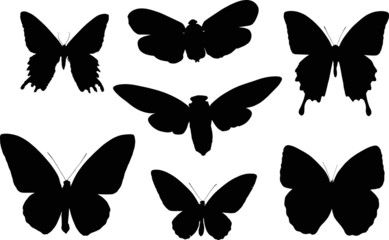 set of seven butterfly black silhouettes
