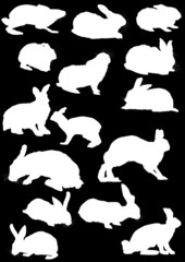 fifteen hare silhouettes collection isolated on black