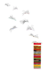 stack of  books and flying books isolated on white