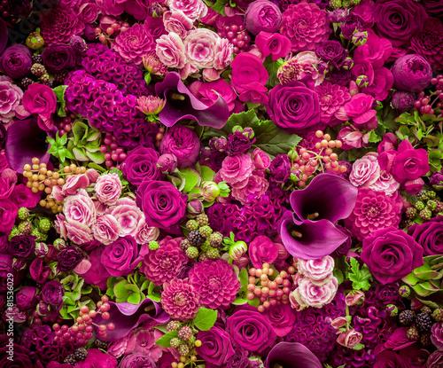 Zdjęcia na płótnie, fototapety, obrazy : Abstract background of flowers. Close-up.