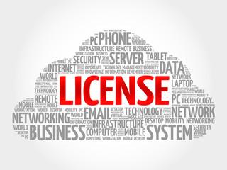 LICENSE word cloud, business concept