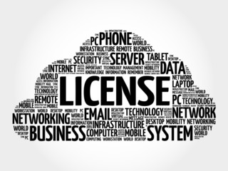 LICENSE word cloud, business concept