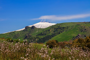 view on hinterland with Pozzillo Lake and volcano Etna