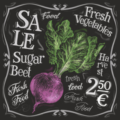 fresh beet vector logo design template. vegetables, food or menu