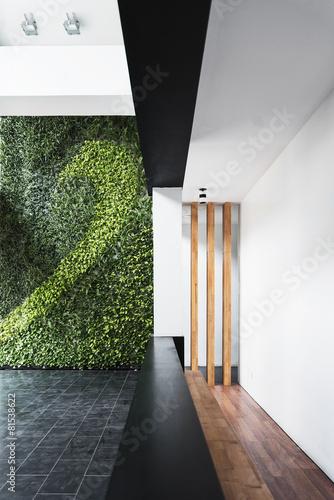 modern architecture minimal style interior with vertical garden - 81538622