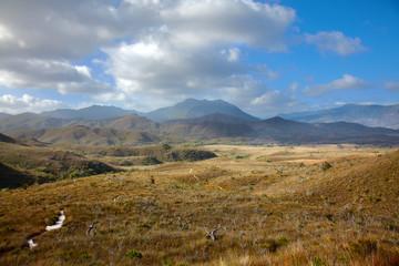 Trail through highland meadows in Tasmanian mountains