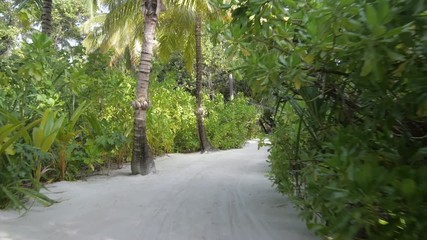 Slow motion through the forest on the sandy Maldives beach.