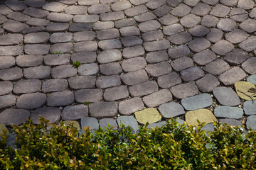 Figured paving slabs