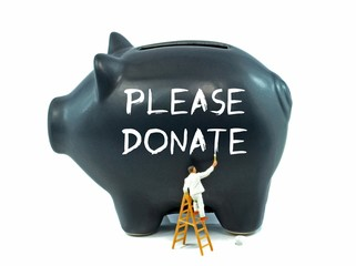 Please Donate painted on a piggy bank on white background