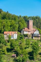 Burg Liebenzell, Bad Liebenzell