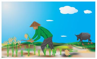 the agriculturist in farm vector design