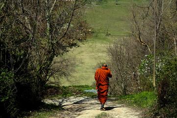 buddismo e festa buddista