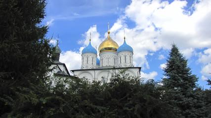 Новоспасский монастырь. Спасо-Преображенский собор