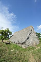 Vinales Cuba Traditional Tobacco Barn
