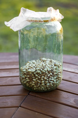 Jar filled with beans