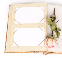 isolated photo album with frames and withered rose