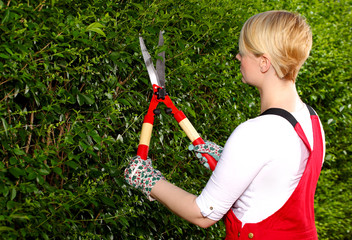 Gardening,woman working in the garden with a pair of scissors