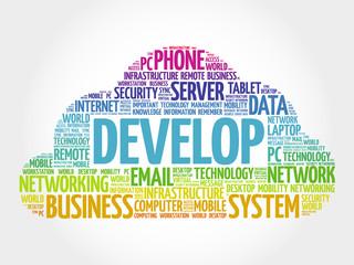 DEVELOP word cloud, business concept