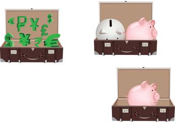valigia di valuta
