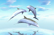 Cheerful game, the family of dolphins against a background of th