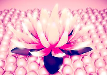 Lotus shine and pearls.