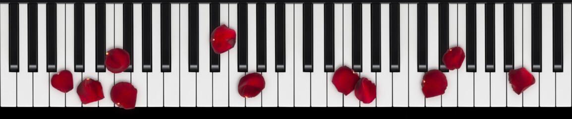 Klavier Tasten mit Rosenblättern