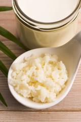 Organic probiotic milk kefir grains