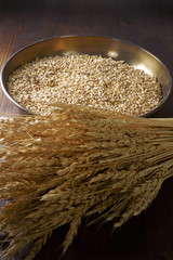Still life of wheat seeds and on a wooden pin