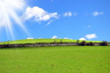 Collina con erba verde e raggi di sole nel cielo blu