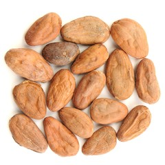 Raw cocoa beans in square shape isolated