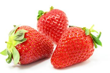 fraises 2015