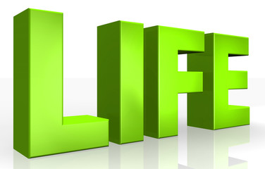 3D life text on white background