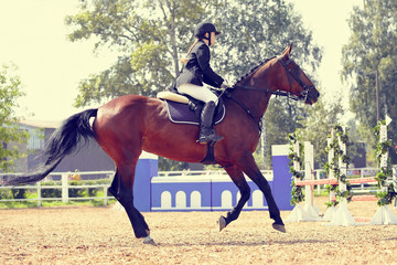 The horsewoman on a sports horse at competitions.