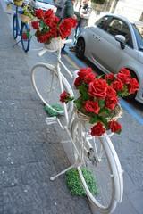 bici bianca e rose