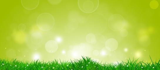 Spring Grass Banner