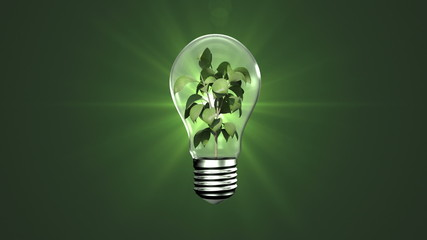 Light bulb with growing plant