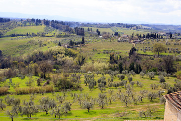 Hills, vineyards and cypress trees, Tuscany landscape near San G