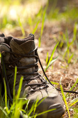 pair of traveler hiker shoes standing in the grass