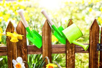 Natur erwachen im Garten