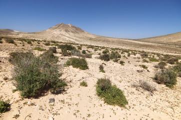 Desert landscape, Fuerteventura, Spain