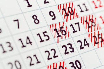 Calendar. Colored calendar