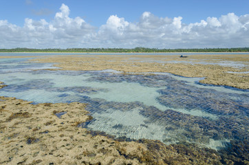 Natural pool in Toque beach, Brazil