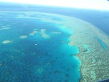 Great Barrier Reef 1 - 81576842