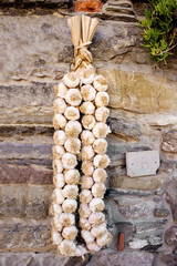 string of delicious italian garlic