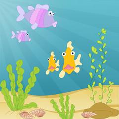 Sea creatures underwater