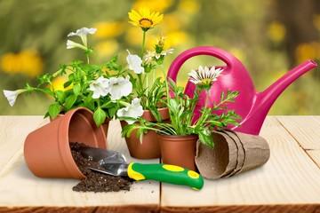 Gardening Equipment. Gardening Tools