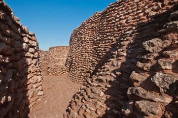 Daimiel, España, Motilla del Azuer, Prehistoria, fortificación