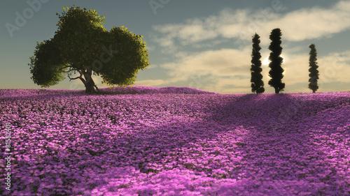 Obraz Pink Flowers Sea, 3d CG
