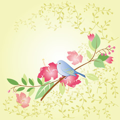 spring flower and bird greeting card
