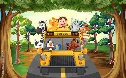 Aluminium Zoo Animals and bus